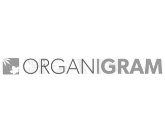 organigramgrey
